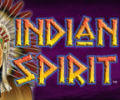 Indian Spirit Slot Machine