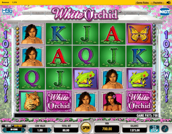 wild orchid slot machine online
