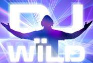 DJ Wild Video Slot Machine