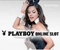 Microgaming Playboy Slot