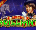 Circus Brilliant Slot