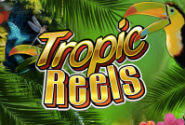Tropic Reels Slot Machine
