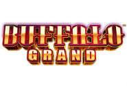 Buffalo Grand Slots Machine