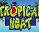 Tropical Heat Slot Machine Video Review