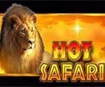 Hot Safari Slot