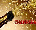 Champagne Slot Machine Review
