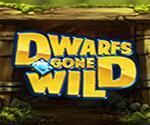Dwarfs Gone Wild Slot Review